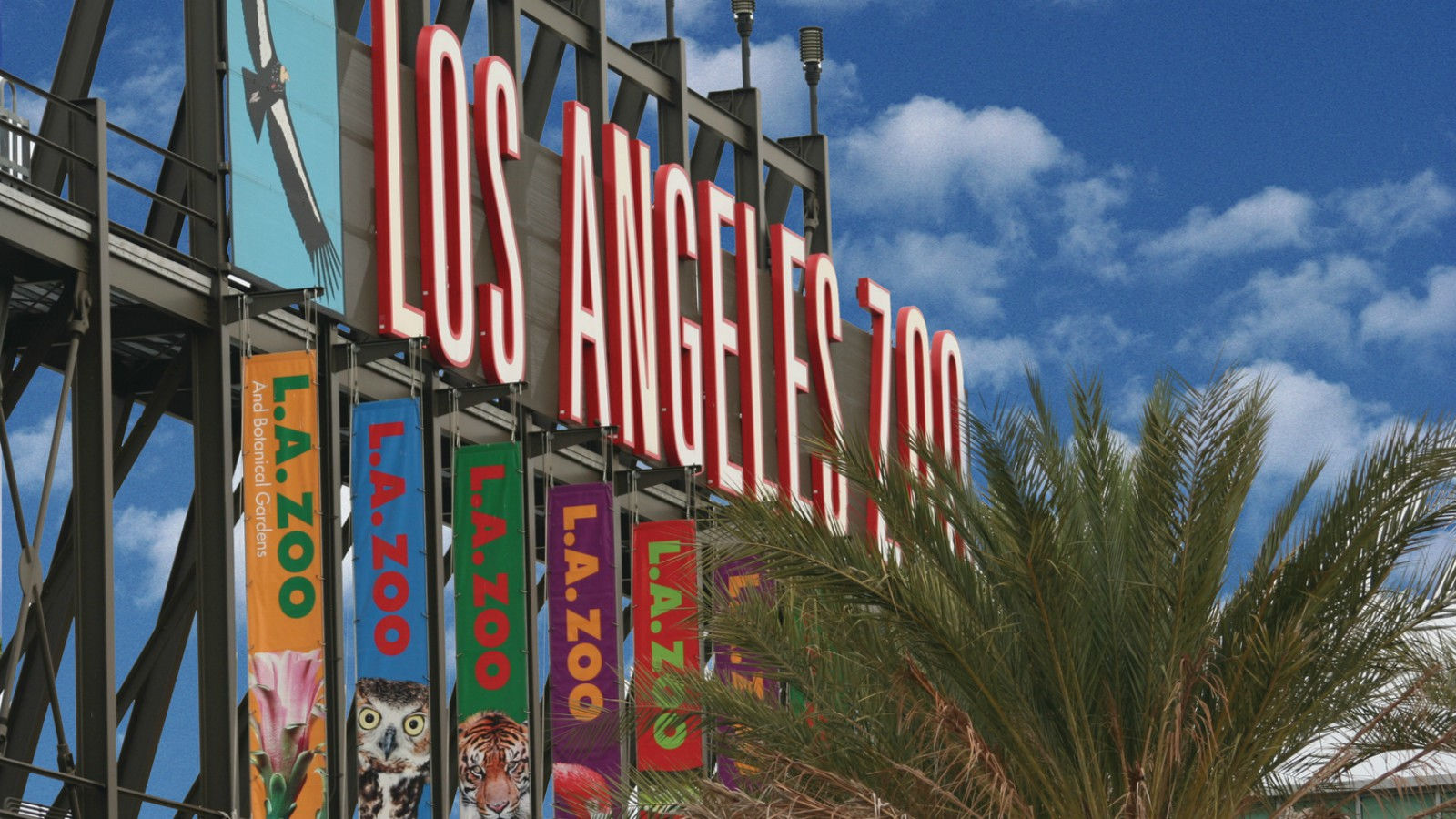 Things to Do in Los Angeles - Los Angeles Zoo
